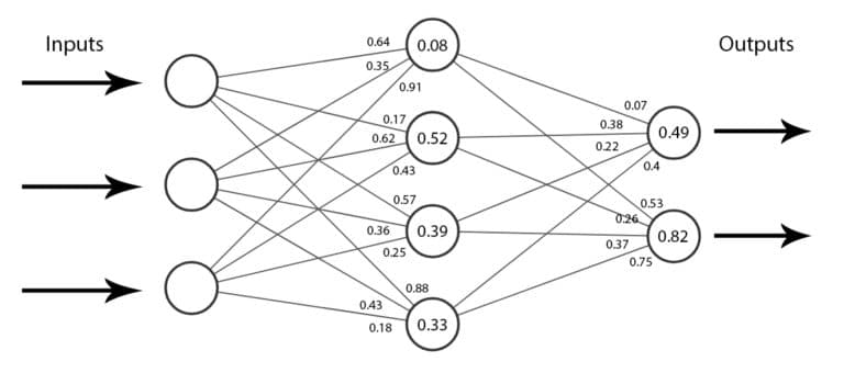 An example of a network's parameters